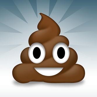 smily poop